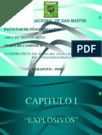 Caminos II Capi