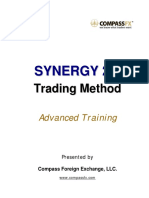 Synergy Method.pdf