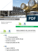 Mtg-1.1 - Endulzamiento de Gas Natural