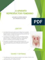 Ivu Aparato Reproductor Femenino Farmacia