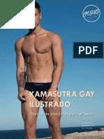 Manual Kamasutra Gay Ilustrado 2017