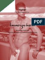 Manual Kamasutra Gay Ilustrado 2014