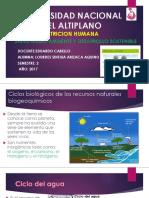 Universidad Nacional Del Altiplano Ciclos Bio
