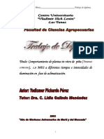 Biotecnologia_piña5