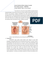 Patofisiologi Dan Manifestasi Klinis Ambigous Genetalia