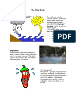 The Water Cycle.docx Info Explained