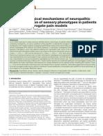 2018 J Vollert Pathophysiological Mechanisms of Neuropathic Pain
