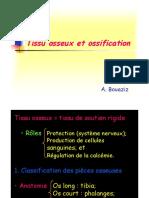 Tissu Osseux Et Ossification
