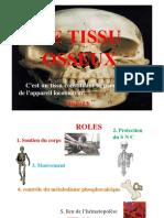 tissu osseux