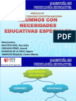 Ne esidades Educativas Especiales.pdf