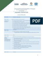 1.Agenda Seminario Presentacion Ods Paraguay Julio 2017
