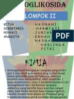 AMINOGLIKOSIDA PWRPOINT