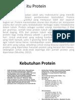 Apa Itu Protein