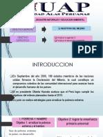 Objetivos Del Milenio y desarrollo sostenible