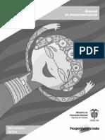 Manual de Implementacion.pdf