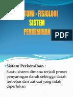 Anfis Sistem Perkemihan.ppt
