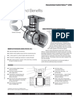 CCVTechDoc.pdf