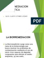 BIORREMEDIACION ENZIMATICA.ppt