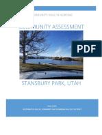 community assessment final