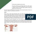 tugas vagina fix.docx