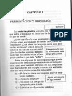 Raiter_Lenguaje en Uso