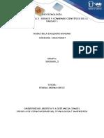 Fase2.Consolidacion_Grupo3