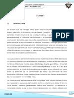 231196238-Trabajo-01-Tuneles.docx