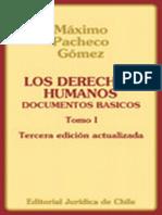 Derechos Humanos Documentos Basicos Maximo Pacheco