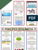 Triptico Principios de La Bioquimica