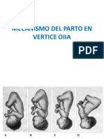 mecanismodepartoverticeoiia-161129153041