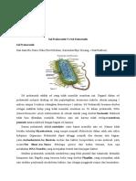 eukariotik vs prokariotik