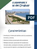 Costas Platenses y Oceánicas Del Uruguay