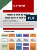 11.- Flujo Vaginal Diagnostico en El Laboratorio