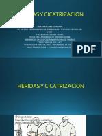6. HERIDAS Y CICATRIZACION.pptx