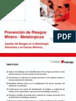2.- Gestión de Riesgos en La Metalurgia Extractiva