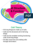 A. Cell Structure Function (1)