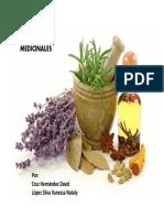 Plantas Medicinales de Silva Nataly