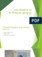 Periodonto Marginal Ou de Proteção (Gengiva)
