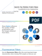 Fluorescence Filters for FISH