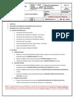MODELO DE INFORME PRACTICA 1.docx