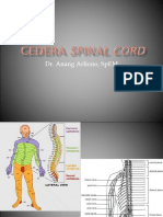 Spinal Cord Injury 180514