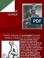 Durerea Cronica - Prezentare