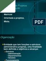 A Organizacao a Estrutura Por Projeto