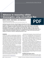 Advances in Measuring Cellular Bioenergetics Using Extracellular Flux