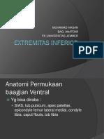Kuliah 2 - Extremitas Inferior (Dr. Hasan)