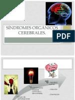 sndromesorgnicoscerebrales-120403114727-phpapp02