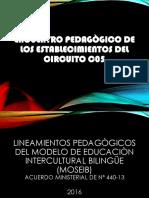 Encuentro Pedagogico de Los Establecimientos Del Circuito c05