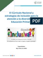 CN y Estrategias de Inclusión