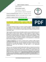 PRACTICO FINAL.docx
