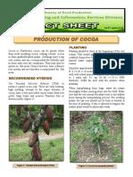 Production of Cocoa 20 DEC 2013